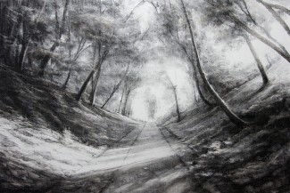 Meon Valley Trail (charcoal on gesso board)